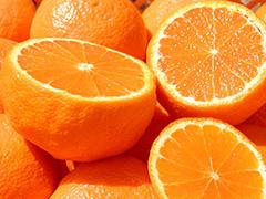 アロマオイル オレンジ・スイート
